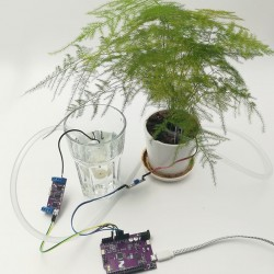 Automatic Plant Watering System
